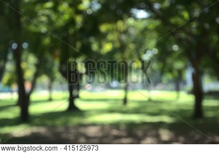 Bokeh Of Nature Fresh Air In Green Metropolitan Local Urban Park, Open Clear Airy Forest With Sunlig