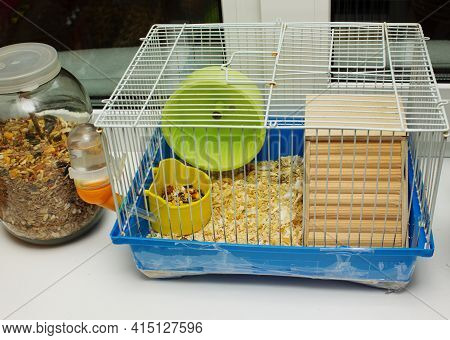 Hamster In A Cage.pet Hamster Care. Cage For Hamster