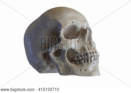 3d Render Of Marble Sculpture Of Human Skull Isolated On White