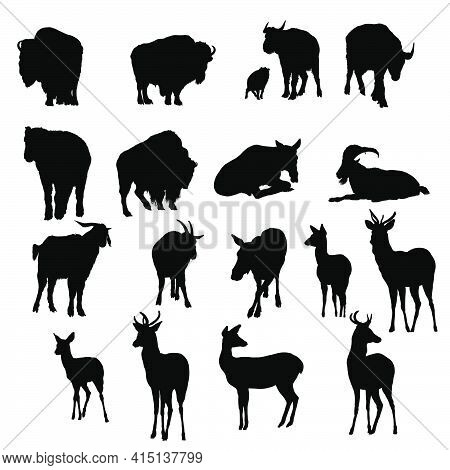 18 Deer, Yak And Goats Silhouettes. Smooth And Clean Lines. High Detailed Deer, Yak And Goats Silhou