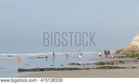 Del Mar, California Usa - 23 Jan 2020: Dog Friendly Beach. People Walking And Training Pets. Owners