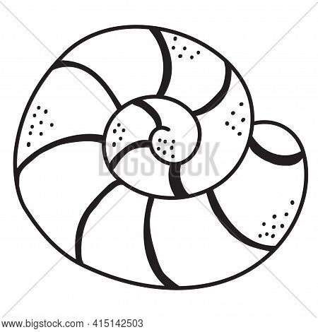 Sea Shell. Underwater, Marine Life Of Flora And Fauna. Decorative Vector Illustration On A White Bac