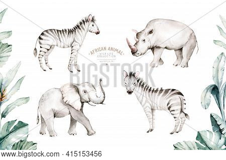 Watercolor Illustration Of African Animals: Elephant And Zoo Illustration , Africa Tee, Brazil Trend