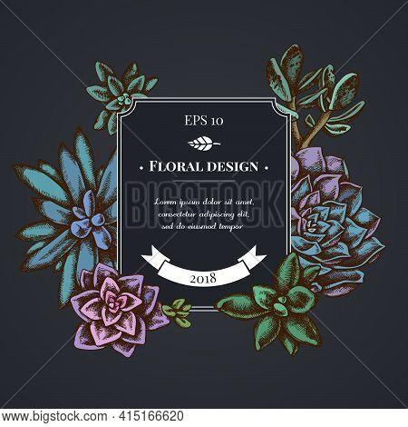 Dark Badge Design With Succulent Echeveria, Succulent Echeveria, Succulent Stock Illustration