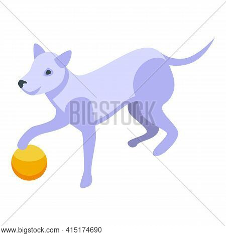 Playful Dog With Rubber Ball Icon. Isometric Of Playful Dog With Rubber Ball Vector Icon For Web Des