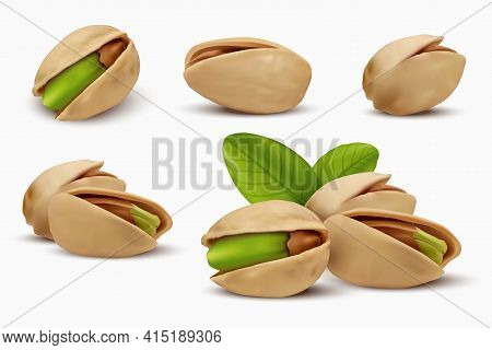 Realistic Pistachios In 3d Style. Roasted Pistachios In Shell Isolated On White Background. Natural