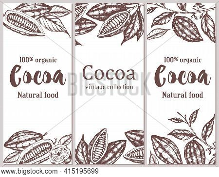 Vintage Hand Drawn Vertical Banners With Cocoa Beans And Plants On A White Background. Vector Illust