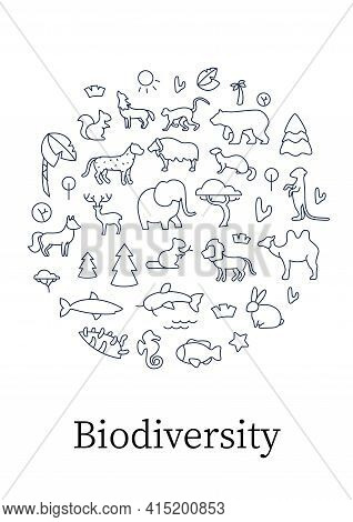 Biodiversity Circle Poster. Consists Of Desert, Grassland And Tundra, Freshwater.rainforest And Cora