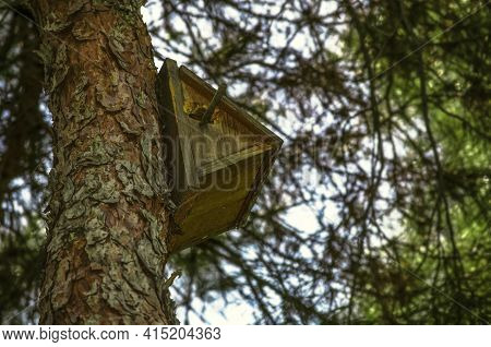 Triangular Wooden Birdhouse With A Round Inlet And A Peg For Resting Small Birds On The Trunk Of A C