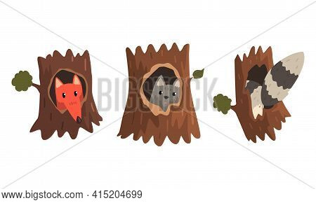 Cute Animals And Birds Living In Tree Hollows Set, Fox, Wolf Peeking Out Of Hollow Cartoon Vector Il