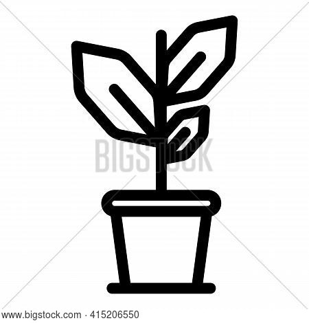 Herbal Bio Plant Icon. Outline Herbal Bio Plant Vector Icon For Web Design Isolated On White Backgro