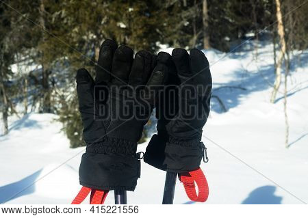 Attributes Of A Ski Trip. Ski Poles And Mittens On Forest Background. Halt