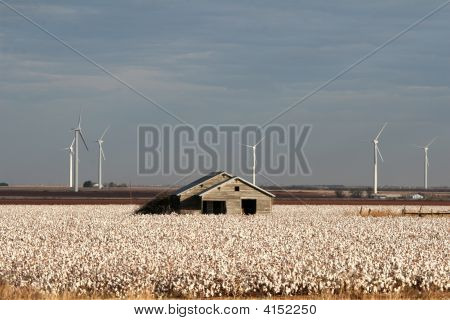 This Ol Farm Knows How To Generate Some Power  Texas