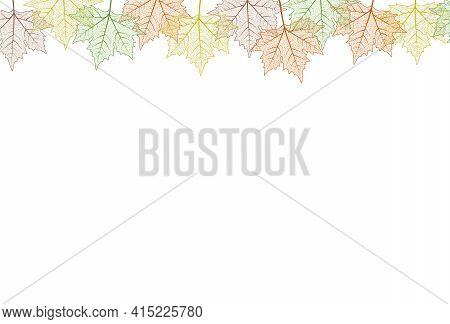 Maple Tree Leaf Frame.  Illustration. Autumn Colors Graphic Card Template Top Boarder.