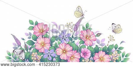 Hand Drawn Wildflowers, Pink Dog-rose And Butterflies On White Background. Delicate Meadow Flowers A