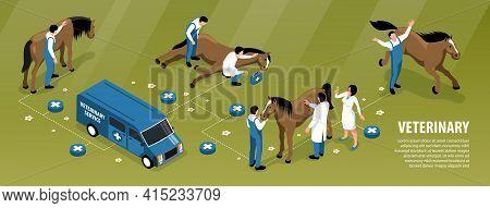Farm Animals Veterinary Isometric Infographic Flowchart With Vet Team Treating Sick Horse On Ranch B