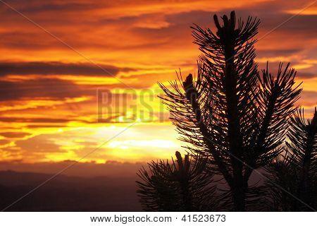 Sunset on Mt Fyffe