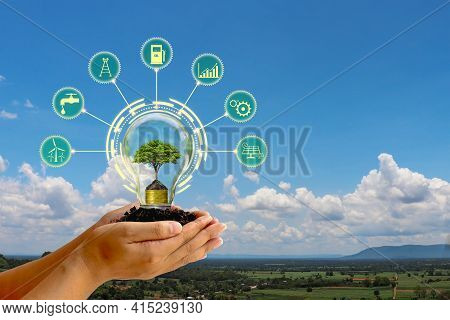 The Tree Growing In The Human Hand Energy Saving Light Bulb And Energy Saving Icon Concept Of Energy
