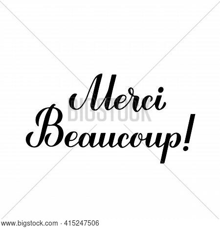 Thank You Very Much Calligraphy Hand Lettering In French Language Isolated On White Background. Vect