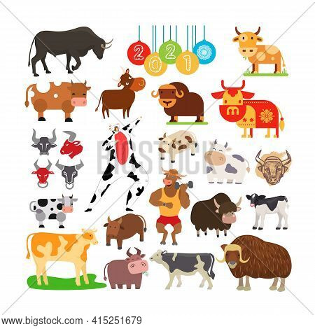 Set With Animal Symbols 2021 According To Eastern Calendar, Vector Illustration. Mammals Character D