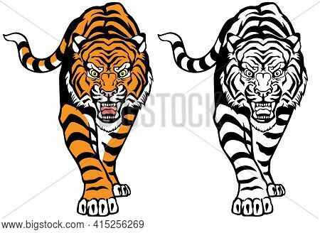 Angry Roaring Tiger. Front View. Colour And Black White Tattoo Style Vector Illustration