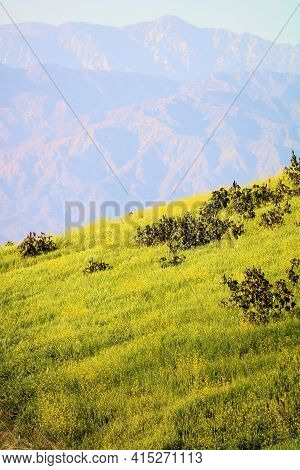 Sunset On Rugged Mountains Taken On A Lush Hillside Covered With Grasslands And Wildflowers During S