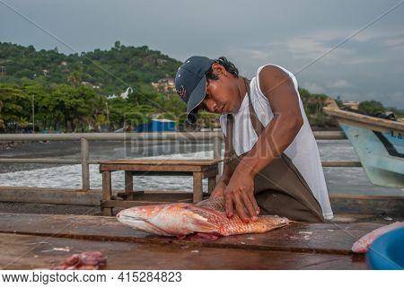 La Libertad, El Salvador. 11-18-2019. Young Male Fisherman Is Cleaning A Fish At The Port Of La Libe