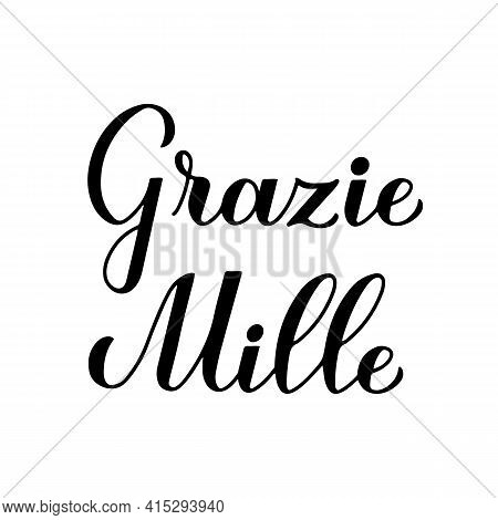 Thank You Very Much Calligraphy Hand Lettering In Italian Language Isolated On White Background. Vec