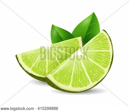 Lime Fruit - Exotic Fruits Collection, Realistic Design Vector Illustration Close-up