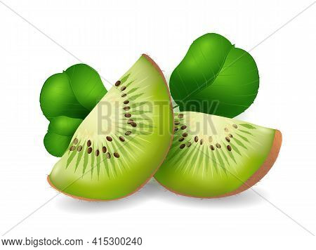 Kiwi Fruit - Exotic Fruits Collection, Realistic Design Vector Illustration Close-up