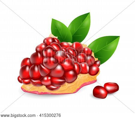 Pomegranate Fruit - Exotic Fruits Collection, Realistic Design Vector Illustration Close-up