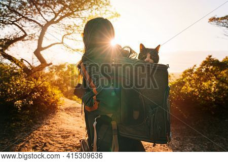 Woman Walking Outdoors In Nature With Her Lovely Cat In Backpack Carrier At Sunset. Funny Cat Looks