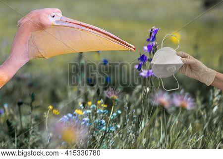 Stop Allergies. Allergy Concept. Allergy To Blooming Flowers, Plants And Pollen. Seasonal Allergies.