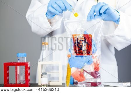 A Woman Researcher Is Holding A Clear Plastic Bag With Biohazard Logo Printed On. The Bag Contains,