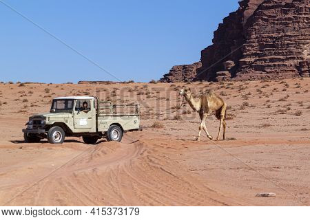 Wadi Rum, Jordan 03/30/2010: A Bedouin Tour Guide Is Driving An Off Road 4x4 Vintage Pickup Truck On