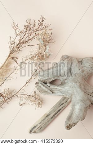 Dry Reeds And Wooden Details On Beige Background. Abstract Dry Grass Flowers, Pile Of Dry Herbs, Hay