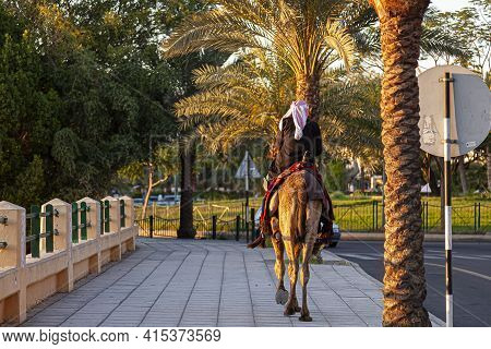 A Jordanian Man Wearing Traditional Arabic Clothes Is Riding A Dromedary Camel On A Side Walk In Aqa
