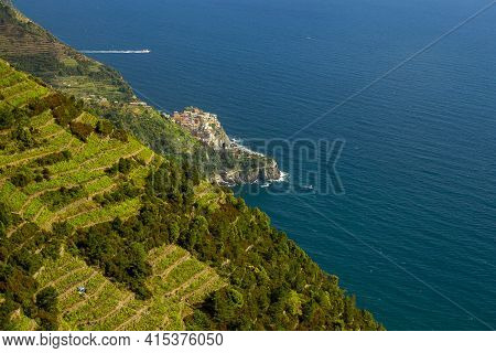 View Of The Mediterranean Coast Of Liguria, Italy Featuring Steep Cliffs With Terraced Vineyards On