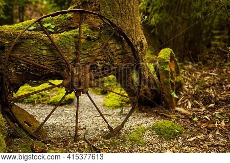 Close Up Abstract Image Of Ancient Cartwheels Abandoned In A Forest By An Old Tree. These Vintage Me