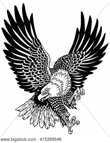 American Whitehead Bald Eagle In The Flight. Landing Attacking Prey Bird.  Tattoo Style Black And Wh