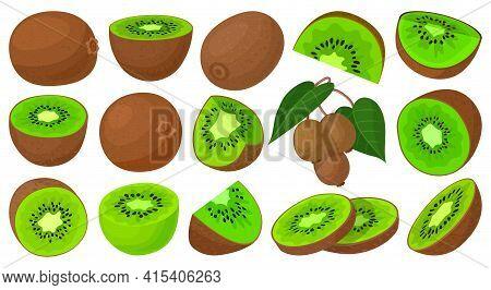 Kiwi Vector Cartoon Set Icon. Vector Illustration Fruit On White Background. Isolated Cartoon Set Ic