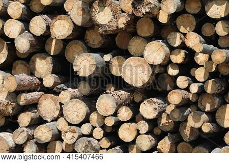 Pile of wooden logs stacked together. Wall of stacked wood logs as background. stack of logs. Stack of firewood close up. Logs cuts prepared for fireplace.