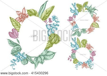 Floral Frames With Pastel Ficus, Iresine, Kalanchoe, Calathea, Guzmania Cactus Stock Illustration