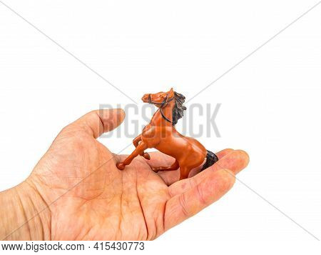 Tame Brown Horse With Black Mane On A White Background.