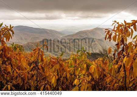 Blue Ridge Mountains Though Golden Leaves Along The Blue Ridge Parkway In North Carolina