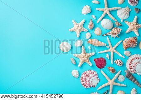 Background With Seashells, A Large Variety Of Seashells And Starfish On A Light Blue Background. Top