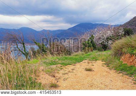 Cloudy Spring Day In Mountains, Beautiful Mediterranean Landscape. Montenegro,  Kotor Bay, Tivat