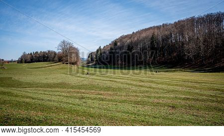 Landscape Scene With Agriculture Field, Trees And Sky. Switzerland. Tranquil Scene. Beauty In Nature
