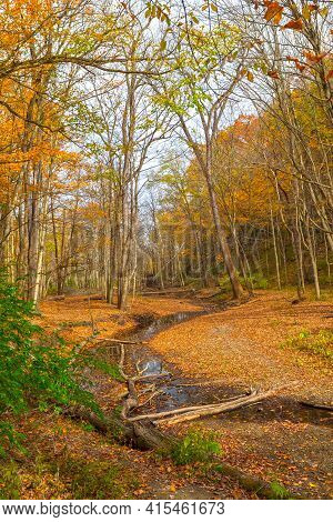 Quiet Stream Through The Fall Forest In Illinois Canyon In Starved Rock State Park In Illinois