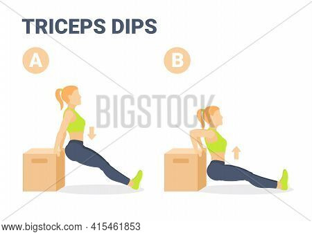 Triceps Dips Girl Home Workout Exercise Guidance. Colorful Concept Of Girl Weight Loss Workout.